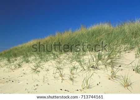Dune at the Atlantic Ocean, beach of Kersiguenou, Crozon, Finistere, Brittany, France