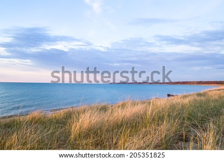 Dune grass blows in the summer breeze with a beautiful freshwater horizon as the backdrop.   - stock photo