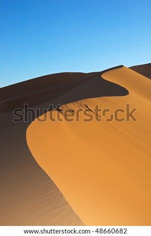 Dune in Sahara desert in Marocco - stock photo