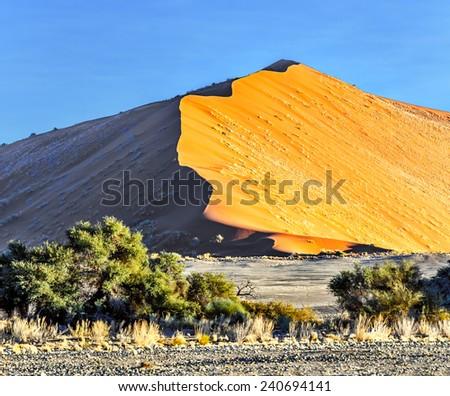 Dune #45 in Sossusvlei plato of Namib Naukluft National Park - Namibia, South Africa - stock photo
