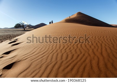 Dune No.45 in Namibia, Africa - stock photo