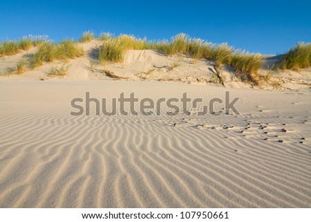 Dune on Beach at Sunset - stock photo