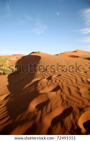 Dune sea of the Namib desert during a hot day wity blue sky - stock photo
