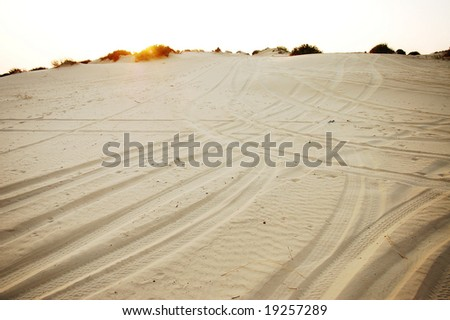 dune trails - stock photo