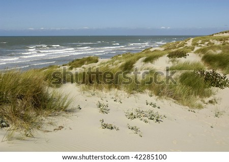 dunes at Stella Plage in the north of France