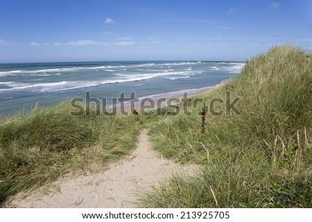 Dunes at the coastline of Hirtshals (Denmark) - stock photo