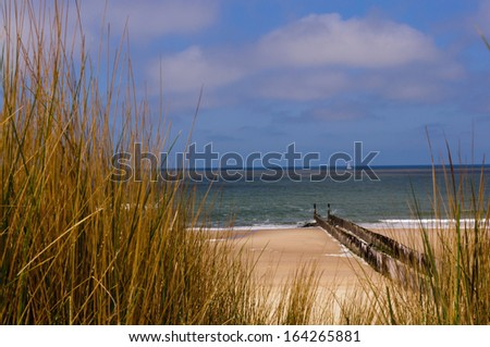 Dunes at the sea with a breakwater and a sailboat in the distance - stock photo