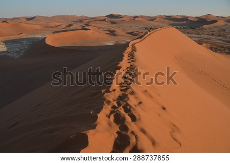 Dunes in Namib desert, Namibia, Africa - stock photo