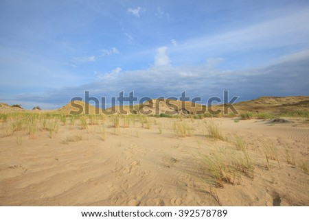 Dunes of sand, Curonian Spit National Park, Lithuania