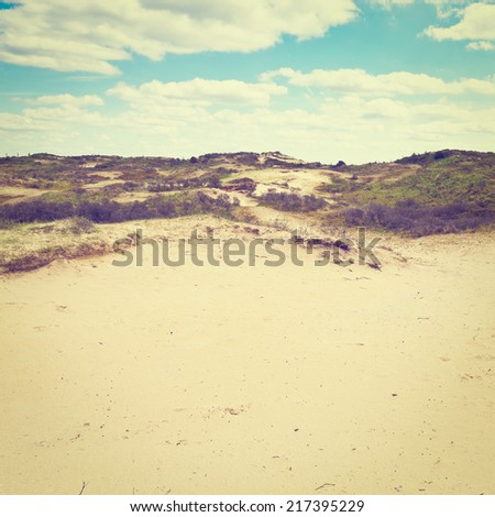 Dunes on the Shore of the North Sea in Netherlands, Instagram Effect - stock photo