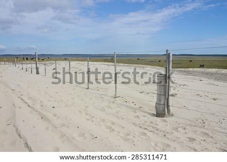 Dunes park at Tramandai/Cidreira - Rio Grande do Sul - Brazil - stock photo