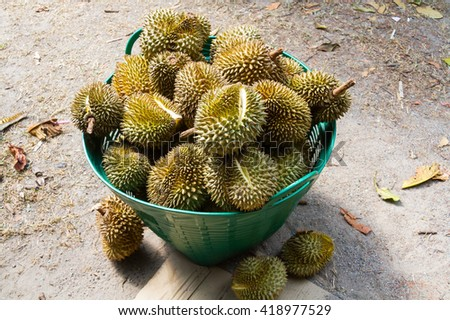 Durian is a fruit that has been very popular in Thailand and around the world.