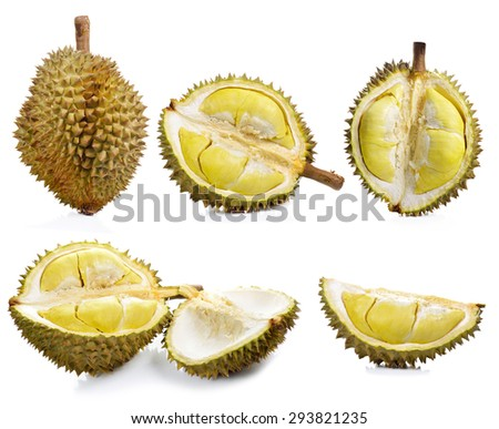 Durian isolated on white background. - stock photo