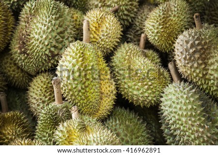 Durian king of fruits in sountheast asia