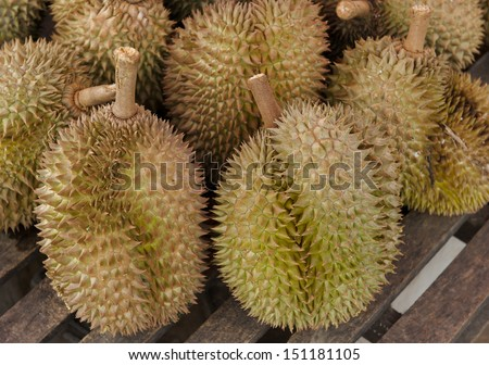 Durian (tropical fruit) on sales in the market of Thailand