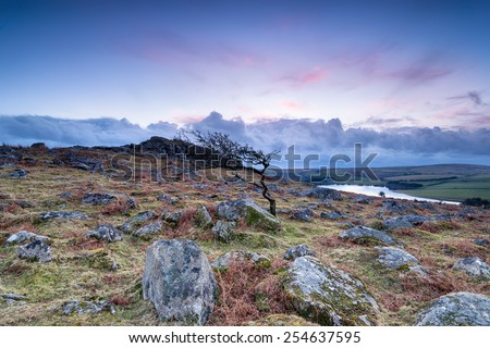 Dusk at Tregarrick Tor looking out over Siblyback Lake on Bodmin Moor in Cornwall - stock photo