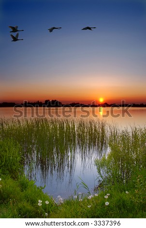 Dusk by the lake - stock photo