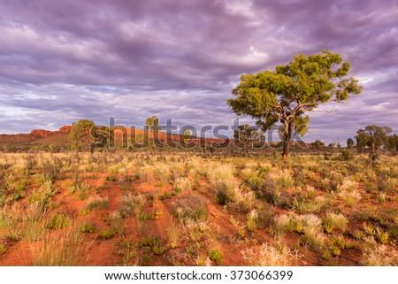 Dusk sky over Kings Canyon, Watarrka National Park, Northern Territory, Australia - stock photo