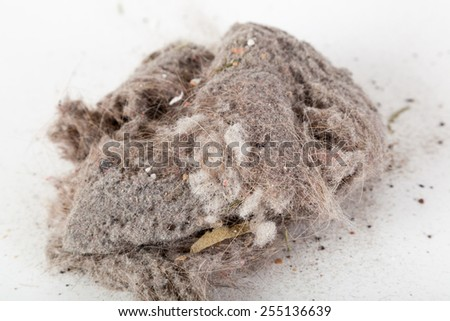 Dust  - stock photo