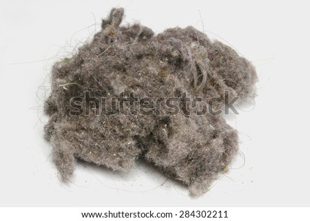 Dust ball over a white background. House dust can produce allergies. Dust bunny - stock photo