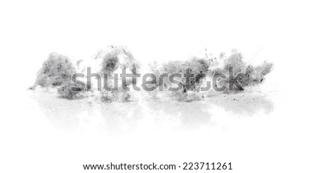 Dust bunnies on white reflecting background - stock photo