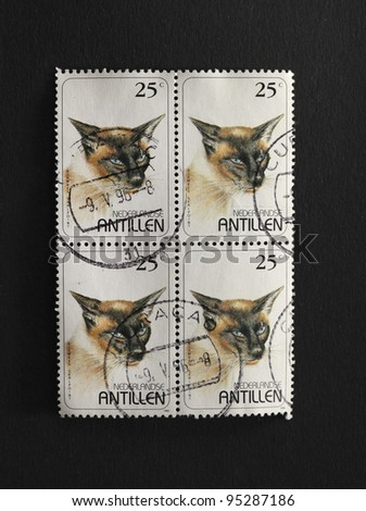 DUTCH ANTILLES- CIRCA 1995: A block of four identical stamps printed in the Dutch Antilles showing the image of a a sealpoint siasmese cat, circa 1995