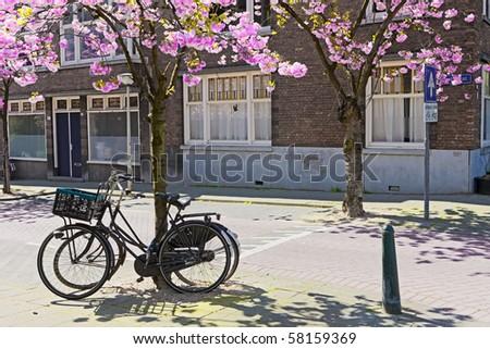 Dutch bicycles - stock photo