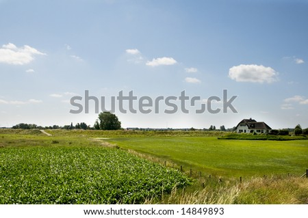 Dutch landscape with farmershouse and agriculture