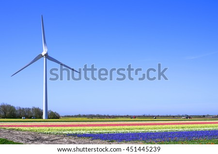 Dutch landscape with huge modern windmill and bulb fields of hyacinths in the North of Holland.