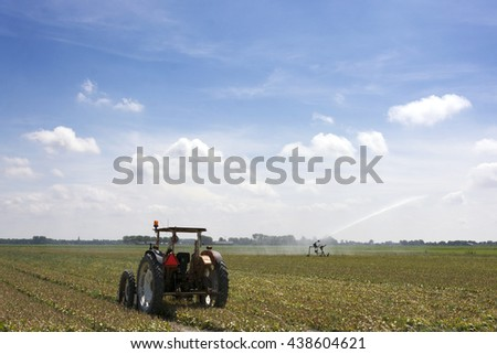 Dutch landscape with overblown bulbs, tractor, irrigation, blue sky, clouds, rural environment