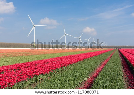 Dutch landscape with tulips and wind turbines - stock photo