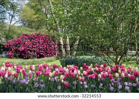 Dutch park - stock photo
