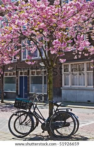 Dutch street scene - stock photo