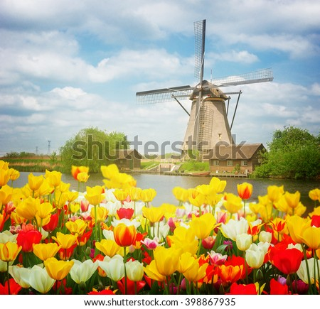 dutch windmill over colorful tulips field at sunny day, Holland, retro toned - stock photo