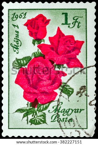 DZERZHINSK, RUSSIA - FEBRUARY 11, 2016: A postage stamp of HUNGARY shows rose, circa 1961 - stock photo