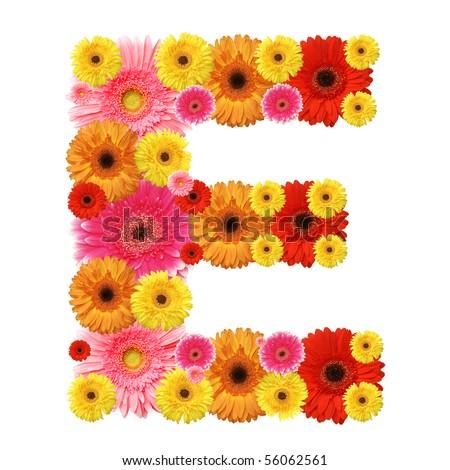 E, flower alphabet isolated on white - stock photo