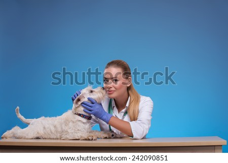 Each of my furry patients is special. A young beautiful female vet being affectionate with an equally affectionate canine licking her face against grey background - stock photo