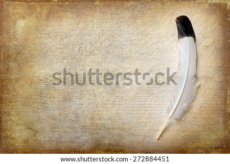 Eagle feather lying on a grunge piece of wood with copy space - stock photo