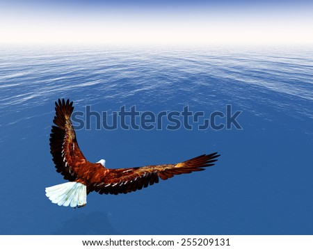 Eagle flying upon ocean by day - 3D render - stock photo