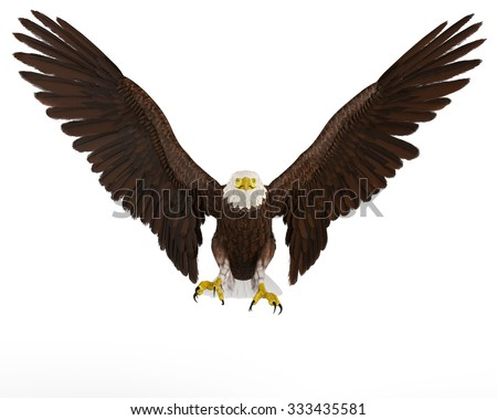 eagle frontal landing - stock photo