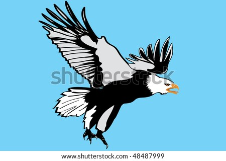 Eagle illustration,very detailed.