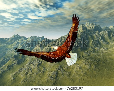 eagle in the mountains - stock photo