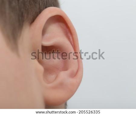 ear. macro - stock photo