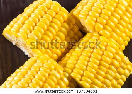 Ear of Corn isolated - stock photo