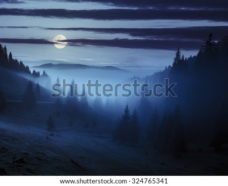 early autumn landscape. fog from conifer forest surrounds the mountain top at night in full moon light - stock photo