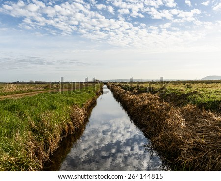 Early morning clouds reflected in a newly-dredged rhyne (or drainage ditch) on West Sedgemoor, part of the Somerset Levels. - stock photo