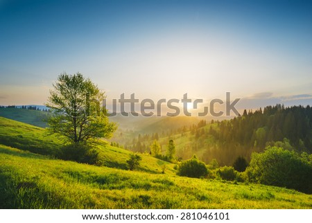 Early morning in a Carpathian valley with beautiful light of sunrise