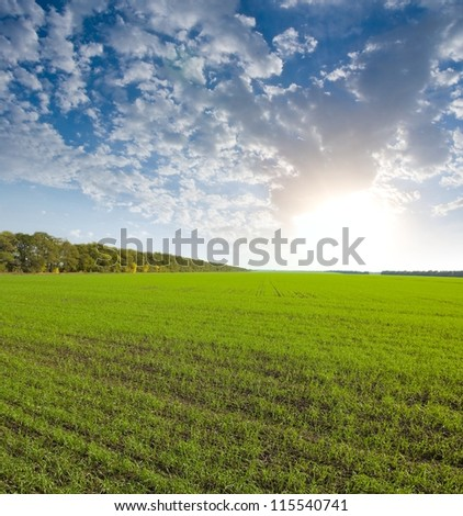 early morning in a village - stock photo
