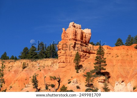 Early morning in Bryce Canyon National Park, Utah, USA - stock photo