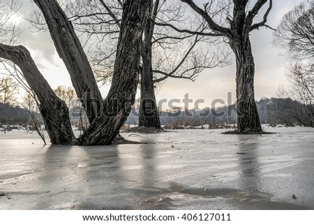 Early morning in the forest. Forest lake covered with ice. The rays of the sun and colorful clouds.Spring landscape.Spring flood. Bottom view on the snow and ice on the river.The thaw in early spring. - stock photo